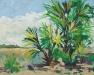 Bugville Palms