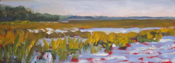 James Island Marsh