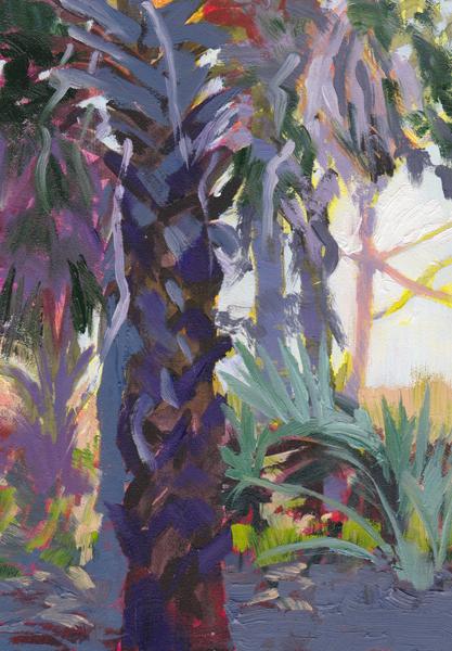 Edisto Mist by Lucinda Howe