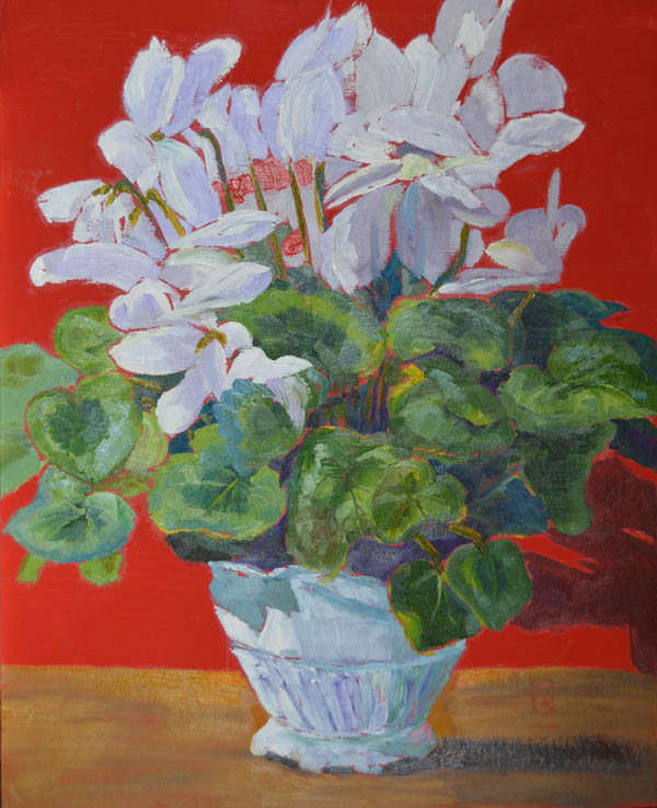 "White Cyclamen 20x16"" Oil on panel ©2015 Lucinda Howe"