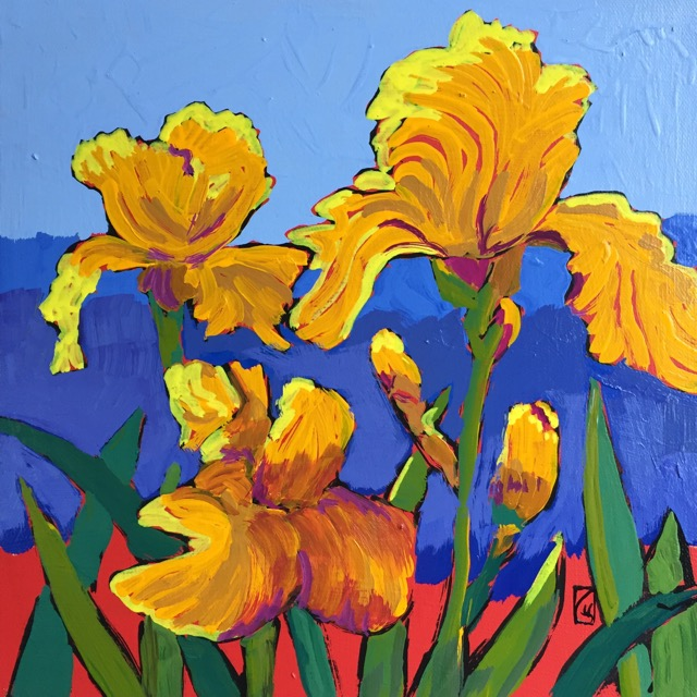 Yellow Irises #2 12x12 inches Acrylic on gallery wrap canvas ©2017 Lucinda Howe $395