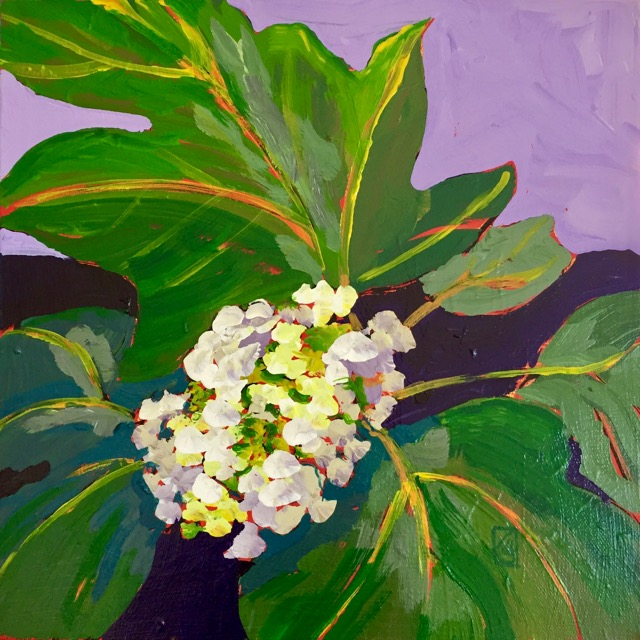 Oakleaf Hydrangea #2 12x12 inches Acrylic on gallery wrap canvas ©2017 Lucinda Howe $395