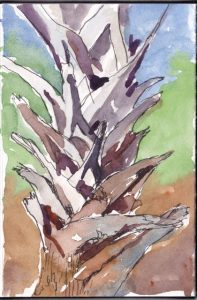 "Palmetto Boots from travel journal 6x4"" Watercolor ©2017 Lucinda Howe"